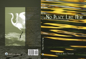 No Place Like Here cover 250pp rev 5 flattened